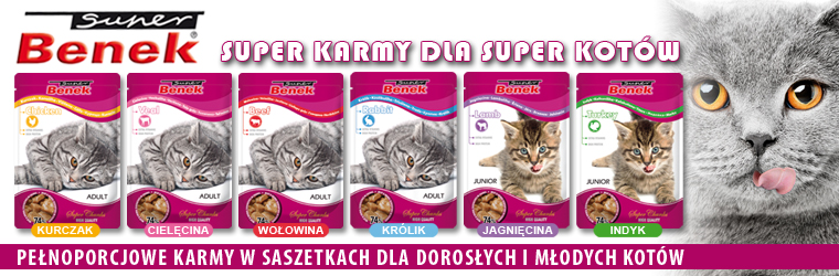 karma dla kota super benek