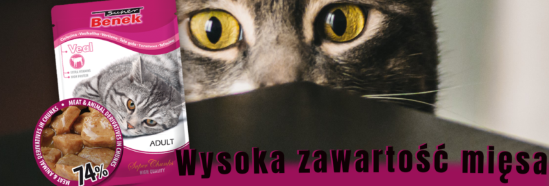 mokra karma dla kota - wysoka zawartość mięsa